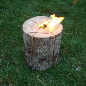 Fire log 2