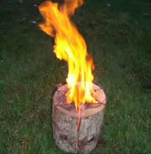 Fire log 3