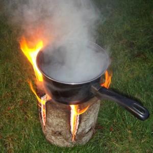 Fire log 4