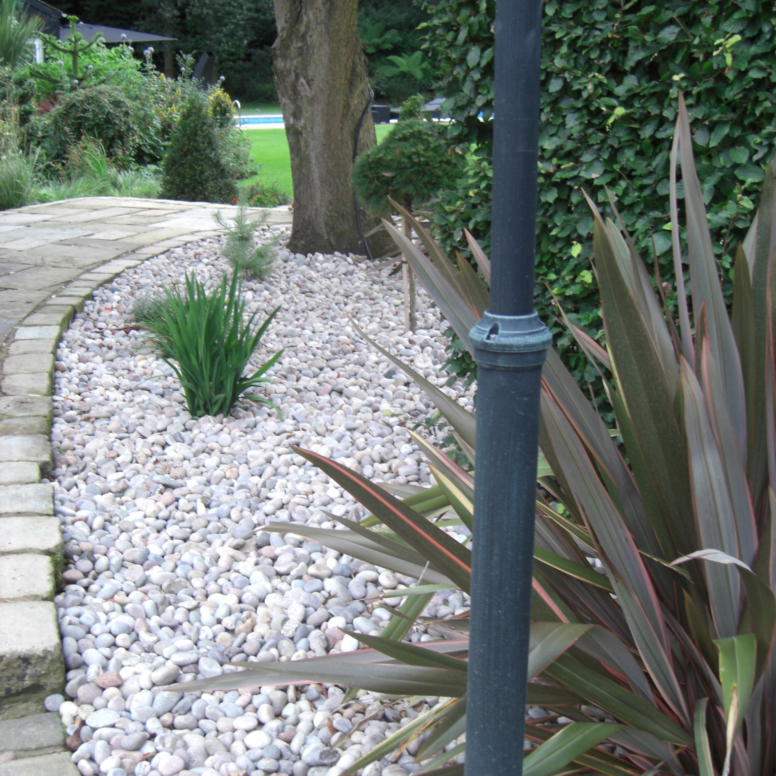 Create a low maintenance gravel border for Creating a low maintenance garden