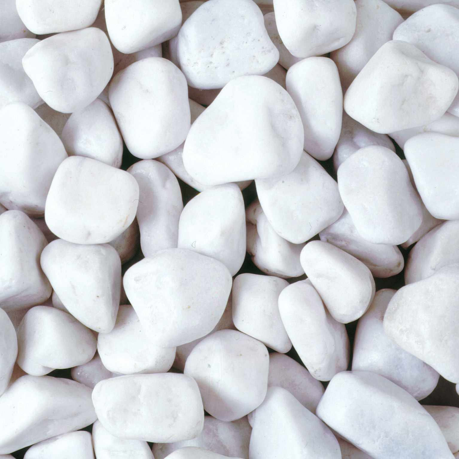 Pebbles And Stones For Gardens 20 40mm polar white pebbles buy spanish pebbles cobbles online welcome to stone garden company workwithnaturefo